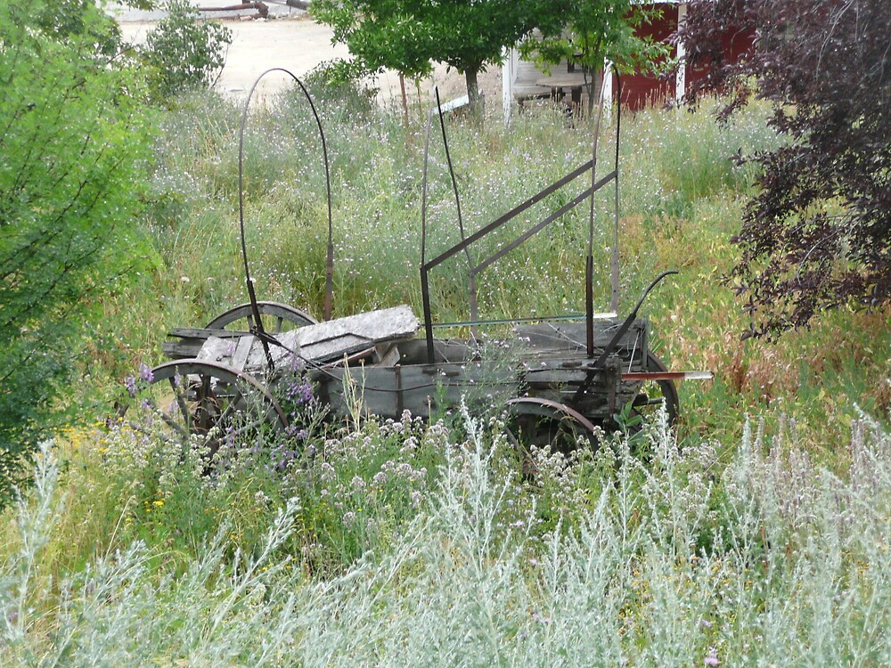 Old Covered Wagon with Frame minus the Cover. by Mywildscapepics