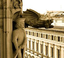 View from Il Duomo, Milano by Natasha D