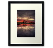 Gunmetal Pink with Trees Framed Print