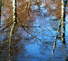 Frozen Reflection by starlitewonder