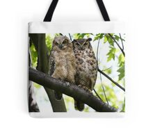 Great Horned Owls..parent and youngun Tote Bag