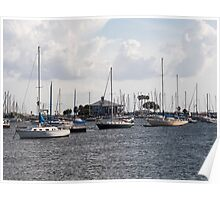 Yachts in the Marina Davis Islands, Tampa, Florida Poster