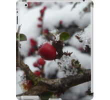 Red Berries iPad Case/Skin