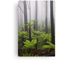 Primal mist. Canvas Print