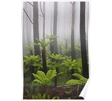 Primal mist. Poster