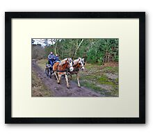 A forest ride Framed Print