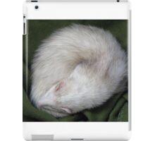 Soundly sleeping iPad Case/Skin