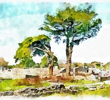 Paestum: archaeological site with trees by Giuseppe Cocco