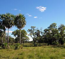 a beautiful Paraguay landscape by beautifulscenes