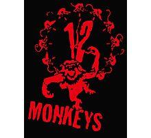twelve monkeys 12 Photographic Print