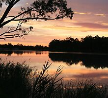 Paringa sunset,Murray River,South Australia. by elphonline