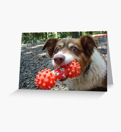 Buddy and his Dumbell Greeting Card