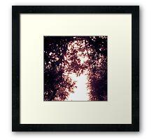 Rho Framed Print