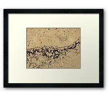 507 Framed Print
