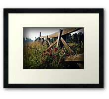 Fence and Wild Roses Framed Print