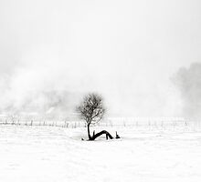 A Winter's tale ... by PhotomasWorld