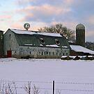 ...amish farm... by Lynne Prestebak