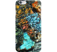 509 iPhone Case/Skin