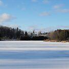 A Winters Tale... by Tracy Wazny