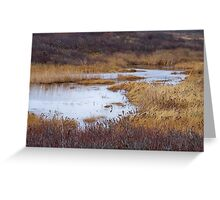 Oyster Pond Greeting Card