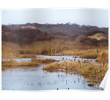 Oyster Pond Poster