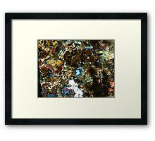 514 Framed Print