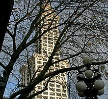 Smith Tower Thru The Lace by starlitewonder
