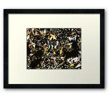 518 Framed Print