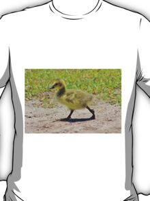 Gosling Taking A Walk T-Shirt