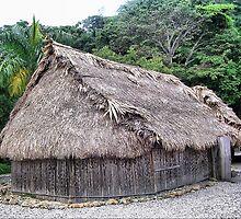 Panamá - Cabaña tradicional indígena. by josemazcona