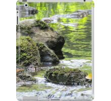 Rocks In The Cullasaja River iPad Case/Skin