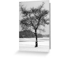 Lone Tree in Winter Landscape, Scotland, UK Greeting Card