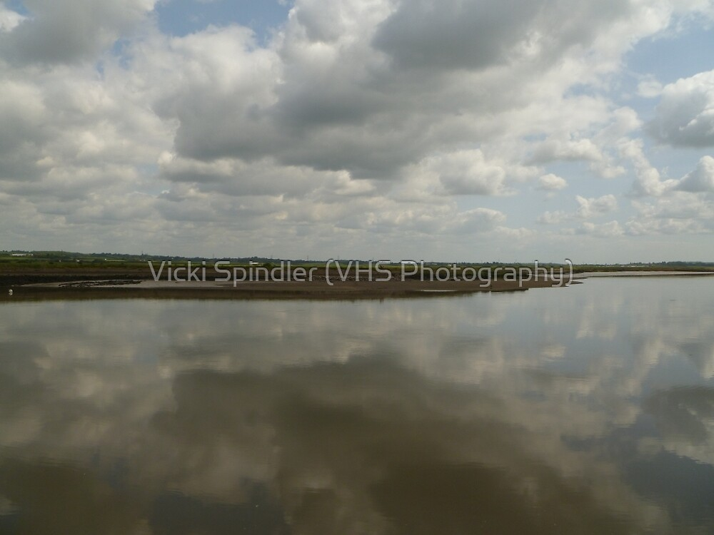Perfect Reflection by Vicki Spindler (VHS Photography)