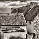 Living Under Thatch by Larry Davis