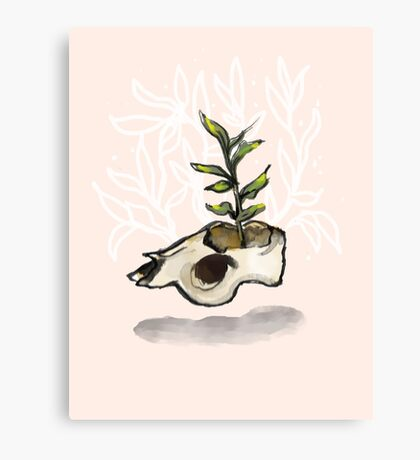Mother of Seeds Canvas Print