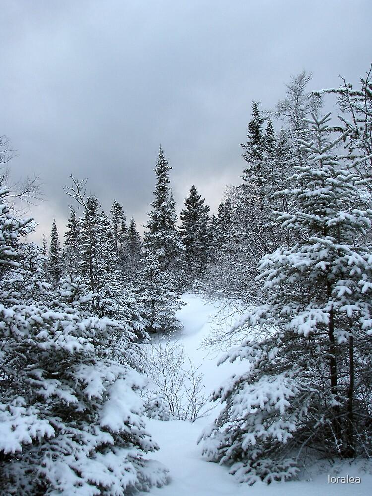 Walkin' in a Winter Wonderland by loralea