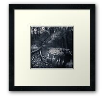 The Woodlands Framed Print