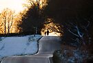 Winter Walk by Nigel Bangert