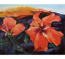 Hibiscus Volcano Photographic Print