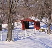 Kostoff Covered Bridge by Monnie Ryan