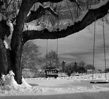 Snow Covered Swings by Mark Van Scyoc
