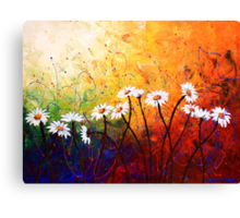 The Daisy Dance Canvas Print