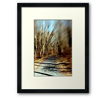Pathway to Nowhere. Framed Print