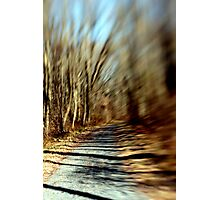 Pathway to Nowhere. Photographic Print