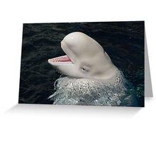 EyeShadow Beluga  Greeting Card