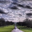 "Cold day on ""the Long Walk"" Windsor by NeilAlderney"