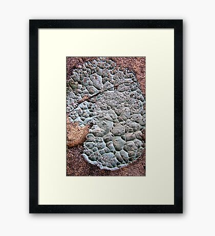 Puttycake Framed Print