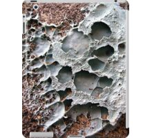 Pretty in Putty iPad Case/Skin