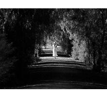 A Gentler Pace Photographic Print