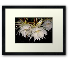 The Joys of Moonflowers Framed Print